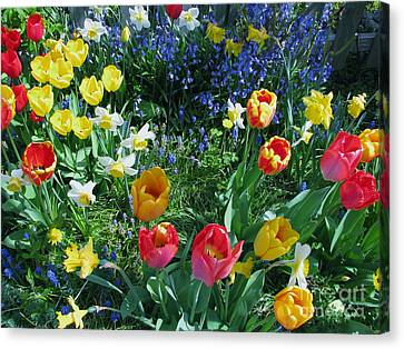 Canvas Print featuring the photograph Tulips Dancing by Rory Sagner