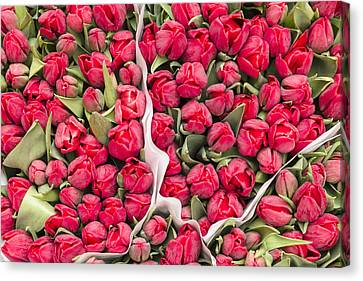 Tulips For Sale At A Flower Market Canvas Print