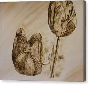 Tulips In Sepia Canvas Print by Maureen Hargrove