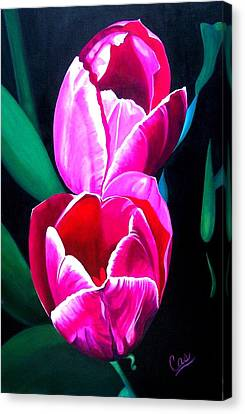 Tulips Canvas Print by Karen Casciani