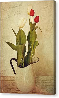 Tulips Canvas Print by Kathy Jennings