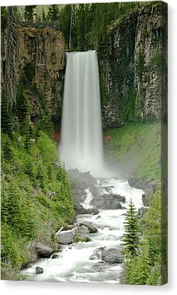 Tumalo Falls Canvas Print by Dave Brenner