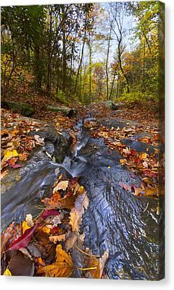 Tumbling Leaves Canvas Print by Debra and Dave Vanderlaan