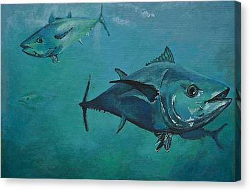Tuna School Canvas Print by Terry Gill