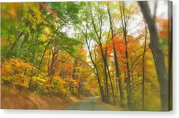 Tunnel Canvas Print by Tom Bush IV