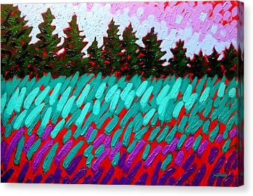 Turquoise Field Canvas Print by John  Nolan