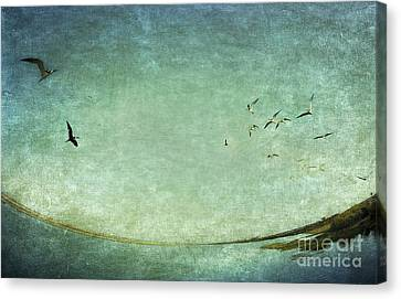 Turquoise World Canvas Print