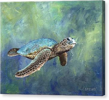 Turtle Crush Canvas Print