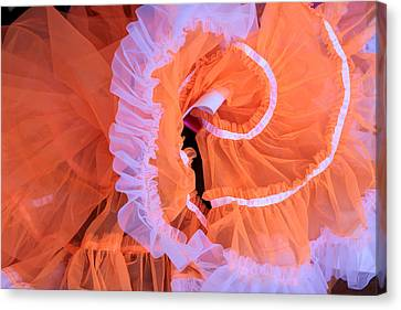Tutu Swirls Canvas Print by Denice Breaux