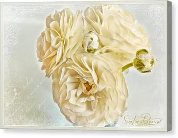 Tutus And Petticoats Canvas Print by Sandra Rossouw