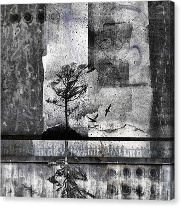 Twelve Moons Canvas Print by Carol Leigh