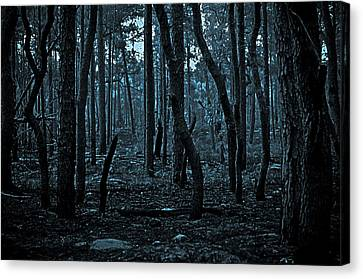 Canvas Print featuring the photograph Twilight In The Smouldering Forest by DigiArt Diaries by Vicky B Fuller