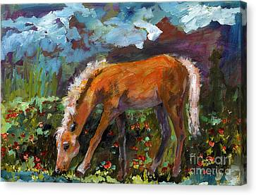 Twilight Pony In Protest Of H.r. 2112 Painting Canvas Print by Ginette Callaway