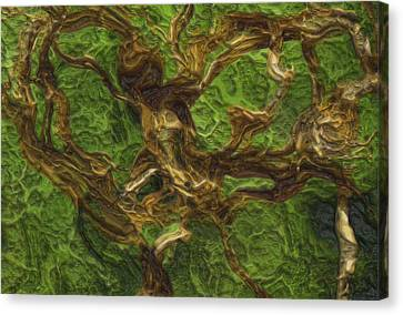 Twisted Canvas Print by Jack Zulli