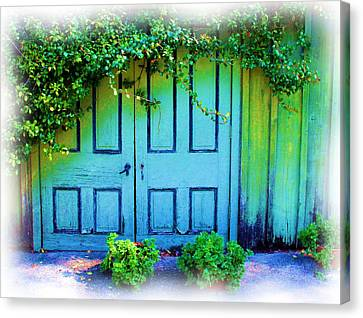 Two Doors Canvas Print by Judi Bagwell