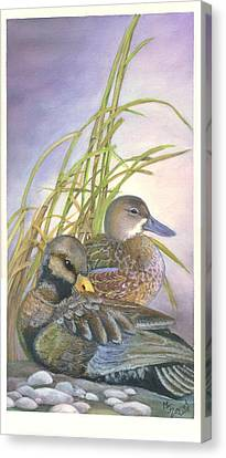 Two Ducks Canvas Print by Mary Jo Zorad