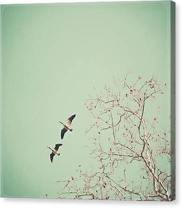 Two Geese Migrating Canvas Print by Laura Ruth