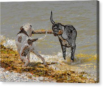 Two Good Friends Canvas Print by David Lee Thompson