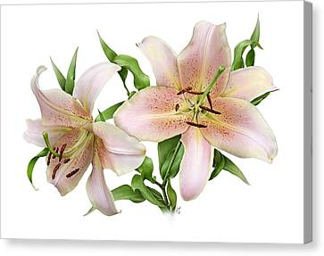 Two Lilies Canvas Print by Artellus Artworks
