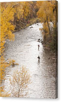 Two Men Flyfishing On The Aspen-lined Canvas Print by Pete Mcbride