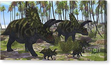Two Mother Coahuilaceratops Escort Canvas Print by Corey Ford
