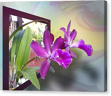 Canvas Print featuring the digital art Two Orchids by Ginny Schmidt