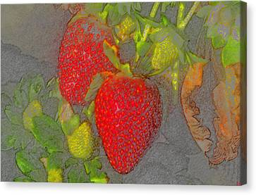 Two Strawberries Canvas Print by David Lee Thompson