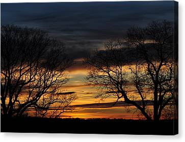 Two Tree Sunrise Canvas Print by Peter  McIntosh