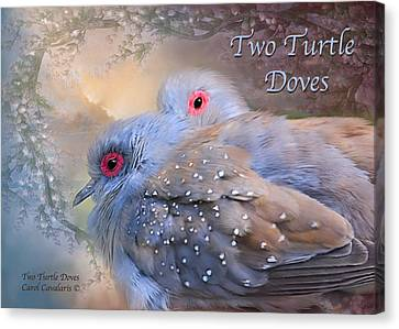 Two Turtle Doves Card Canvas Print by Carol Cavalaris