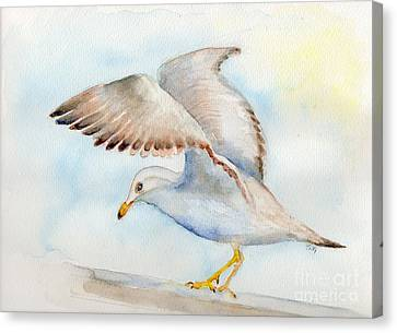 Tybee Seagull Canvas Print by Doris Blessington