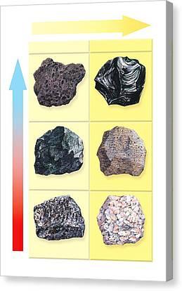 Types Of Volcanic Rock Canvas Print by Gary Hincks