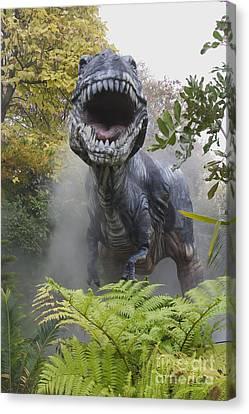 Tyrannosaurus Canvas Print by David Davis and Photo Researchers
