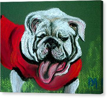 UGA Canvas Print by Pete Maier