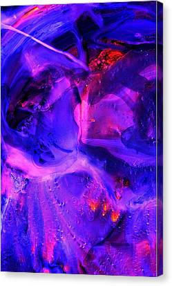 Ultraviolet Canvas Print by Colleen Cannon