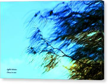 Canvas Print featuring the photograph Under The Tree by Itzhak Richter