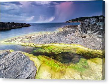 Unexpected Storm Canvas Print by Evgeni Dinev