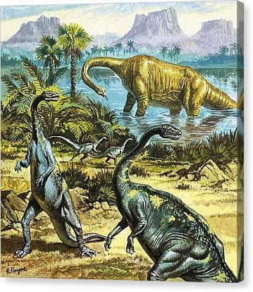 Unidentified Prehistoric Creatures Canvas Print