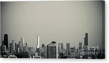 Unique Buildings In Chicago Skyline   Canvas Print by Linda Matlow