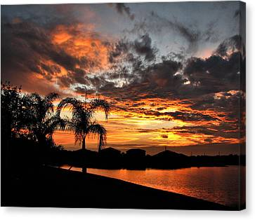 Untitled Sunset-8 Canvas Print by Bill Lucas