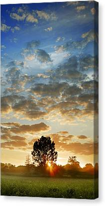 Canvas Print featuring the photograph Up Up And Away by John Chivers