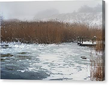 Upon A Frozen Pond. Canvas Print by Terence Davis