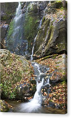 Upper Dark Hollow Falls In Shenandoah National Park Canvas Print by Pierre Leclerc Photography