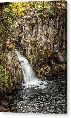 Canvas Print featuring the photograph Upper Falls Mccloud River by Randy Wood
