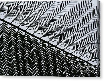 Ups And Downs Canvas Print by Vishakha Bhagat
