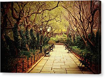 Tree Blossoms Canvas Print - Urban Forest Primeval - Central Park Conservatory Garden In The Spring by Vivienne Gucwa
