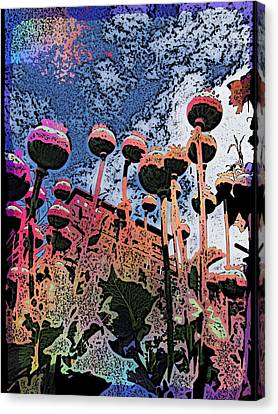 Urban Poppy Canvas Print