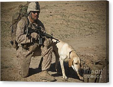 Working Dog Canvas Print - U.s. Marine Provides Security by Stocktrek Images