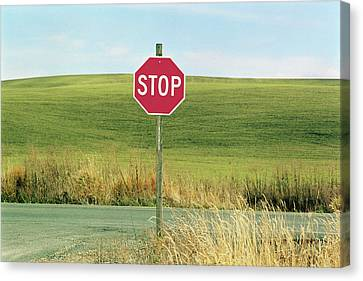Usa, Washington, Palouse, Stop Sign On Country Road Canvas Print by Mel Curtis