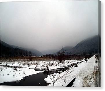 Valley Mist Canvas Print