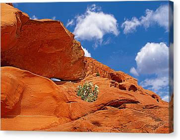 Valley Of Fire - Adventure In Color And Beauty Canvas Print by Christine Till